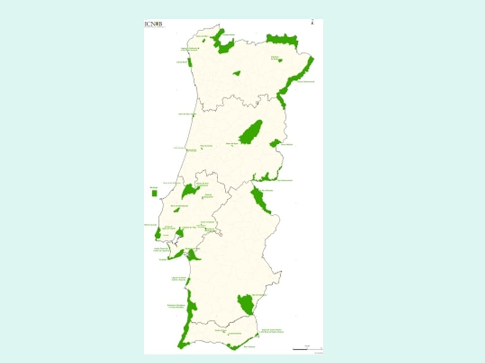 3 - Reservas Naturais Uma reserva natural é uma área destinada à protecção da flora e da fauna.