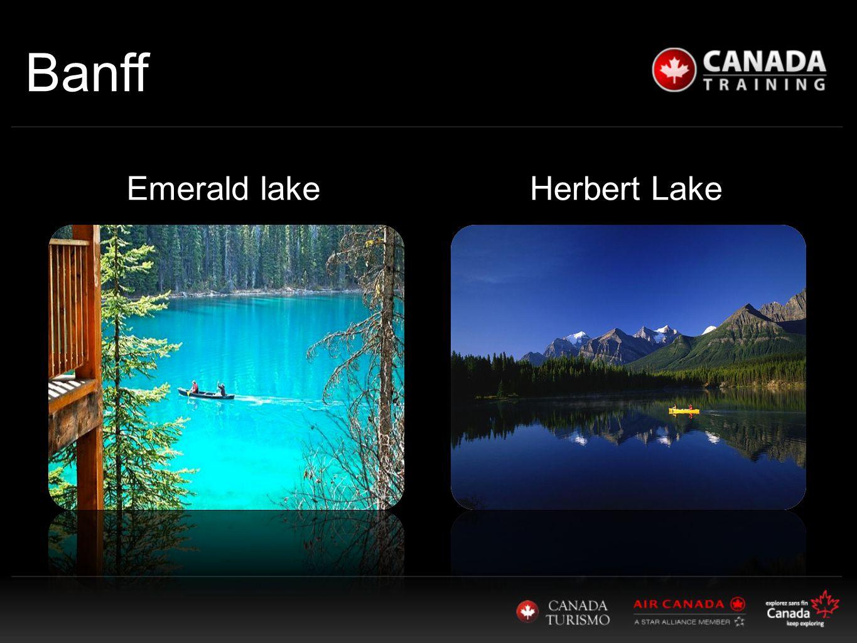 Herbert Lake Banff Emerald lake