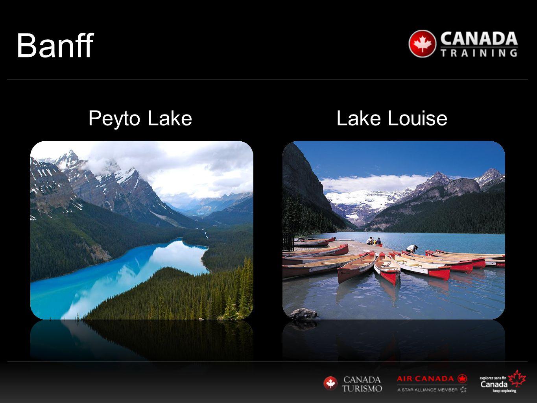 Banff Lake LouisePeyto Lake