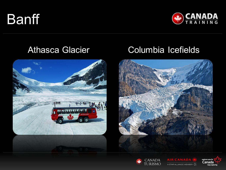 Banff Columbia IcefieldsAthasca Glacier