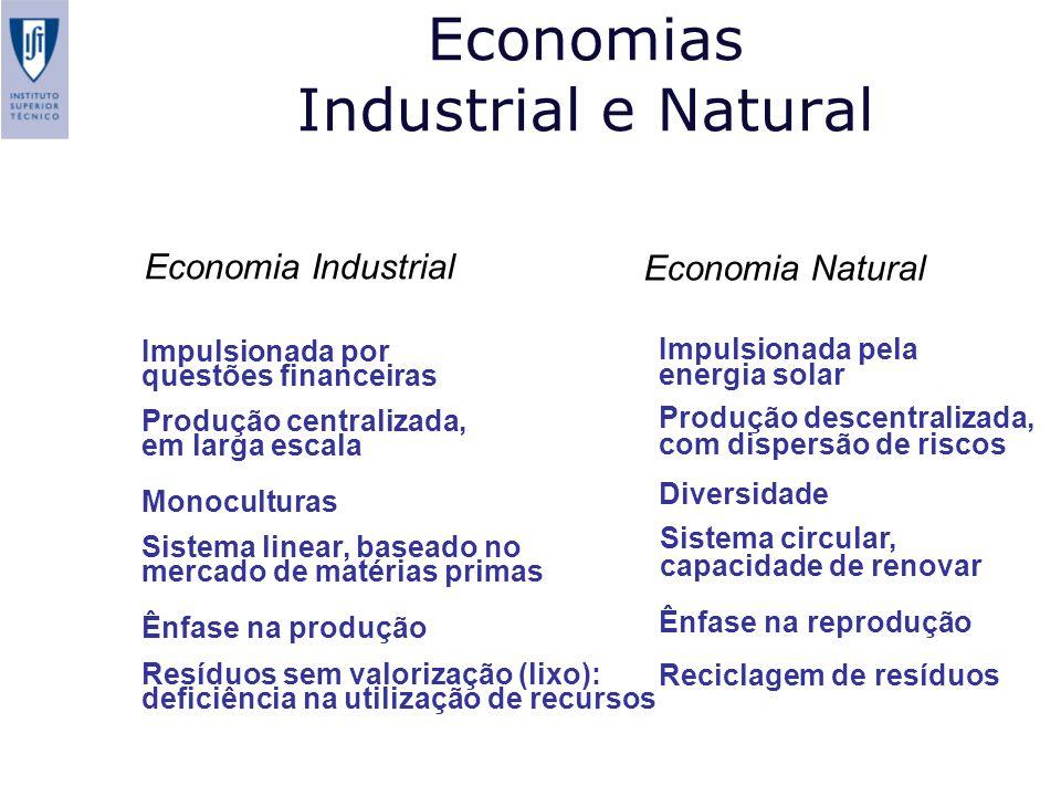 Economias Industrial e Natural Economia Industrial Economia Natural Impulsionada por questões financeiras Produção centralizada, em larga escala Monoc