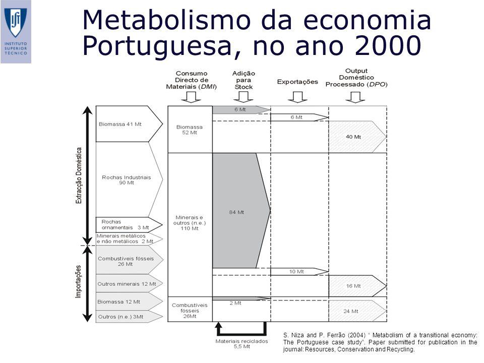 Metabolismo da economia Portuguesa, no ano 2000 S. Niza and P. Ferrão (2004) Metabolism of a transitional economy: The Portuguese case study. Paper su