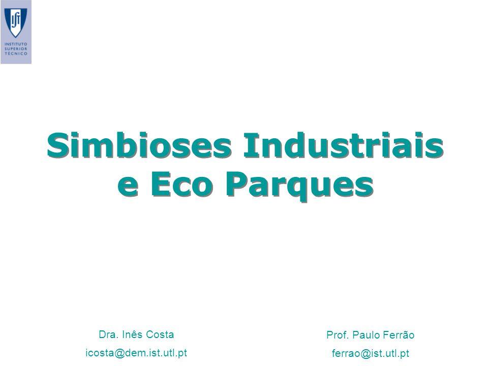 Simbioses Industriais e Eco Parques Dra. Inês Costa icosta@dem.ist.utl.pt Prof. Paulo Ferrão ferrao@ist.utl.pt