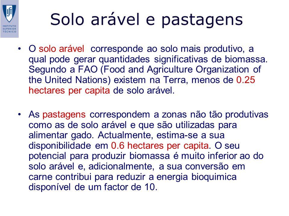 Solo arável e pastagens O solo arável corresponde ao solo mais produtivo, a qual pode gerar quantidades significativas de biomassa. Segundo a FAO (Foo