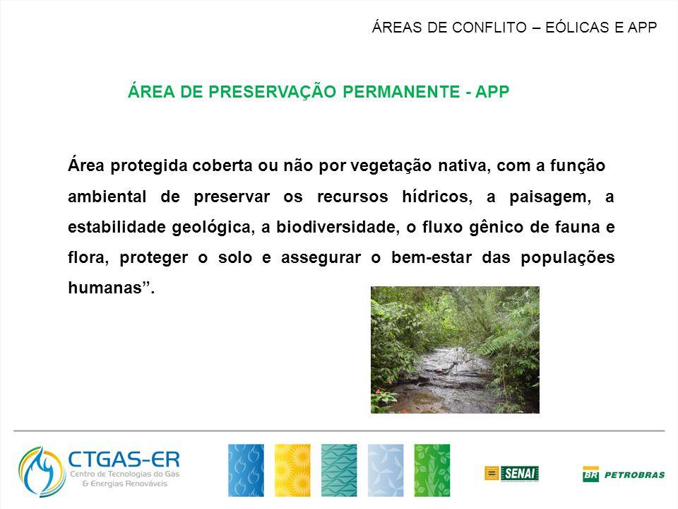Área protegida coberta ou não por vegetação nativa, com a função ambiental de preservar os recursos hídricos, a paisagem, a estabilidade geológica, a biodiversidade, o fluxo gênico de fauna e flora, proteger o solo e assegurar o bem-estar das populações humanas.