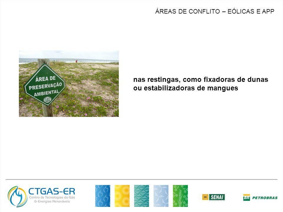 ÁREAS DE CONFLITO – EÓLICAS E APP nas restingas, como fixadoras de dunas ou estabilizadoras de mangues
