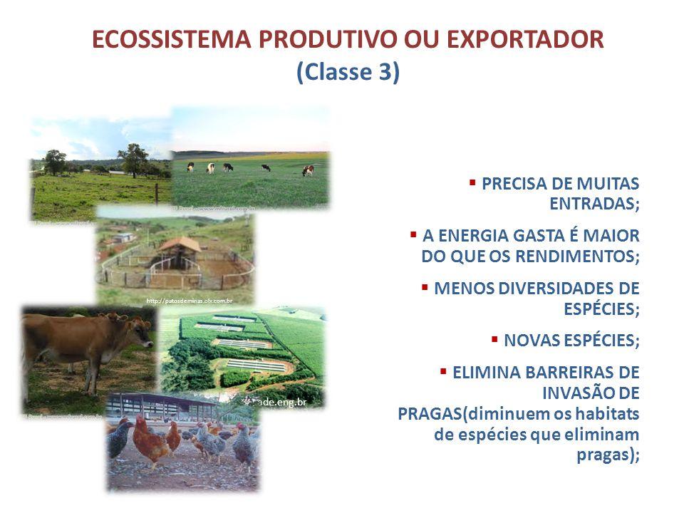 ECOSSISTEMA PRODUTIVO OU EXPORTADOR (Classe 3) PRODUZ ALIMENTOS E OUTROS RECURSOS; PRECISA DE MUITAS ENTRADAS; A ENERGIA GASTA É MAIOR DO QUE OS RENDI