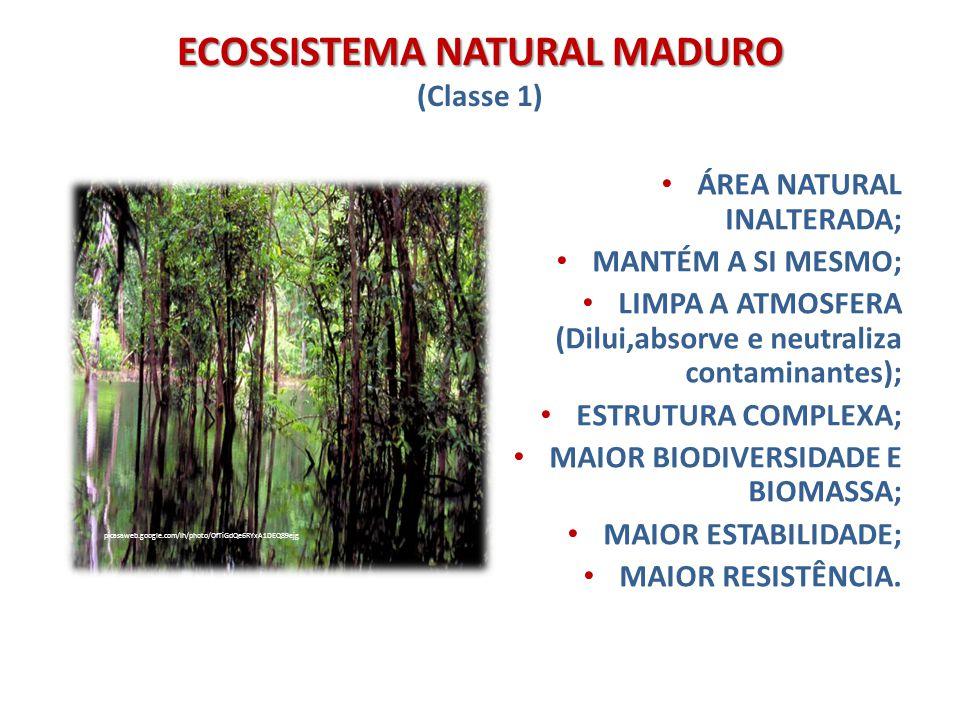 ECOSSISTEMA NATURAL CONTROLADO ECOSSISTEMA NATURAL CONTROLADO (Classe 2) Ecossistema representativo, preservado como rede de proteção da biodiversidade de plantas, animais e microrganismos.