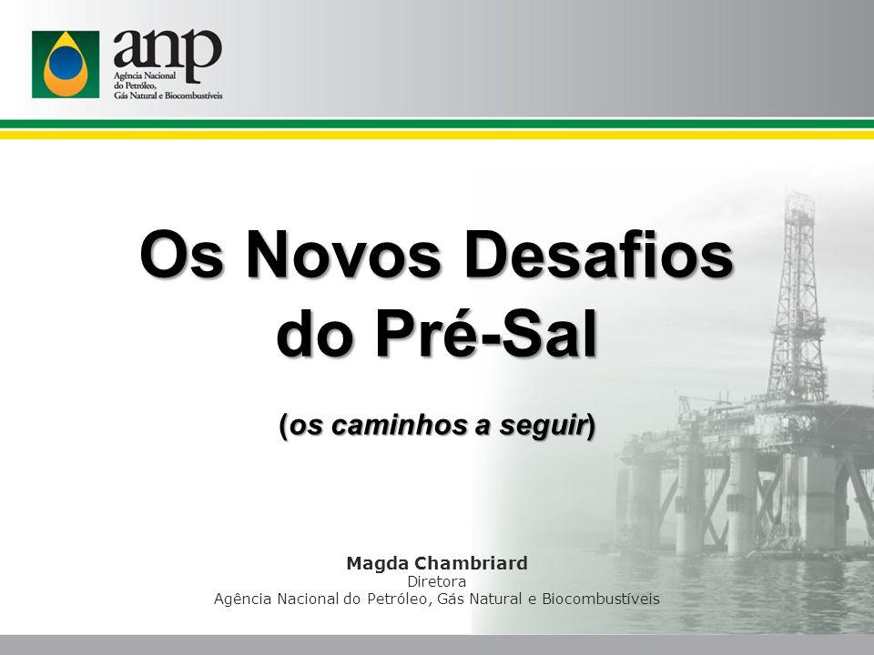 Magda Chambriard Diretora Agência Nacional do Petróleo, Gás Natural e Biocombustíveis Os Novos Desafios do Pré-Sal (os caminhos a seguir)