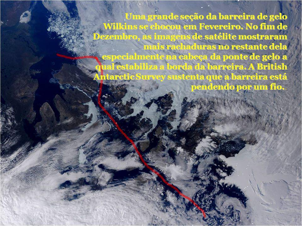 Uma grande seção da barreira de gelo Wilkins se chocou em Fevereiro. No fim de Dezembro, as imagens de satélite mostraram mais rachaduras no restante
