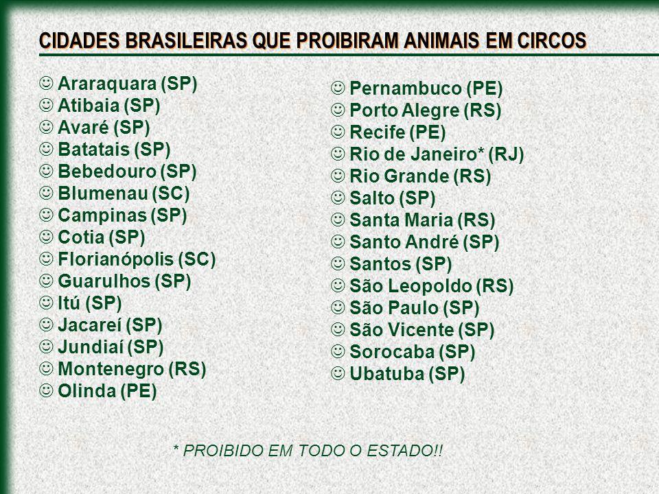 Araraquara (SP) Atibaia (SP) Avaré (SP) Batatais (SP) Bebedouro (SP) Blumenau (SC) Campinas (SP) Cotia (SP) Florianópolis (SC) Guarulhos (SP) Itú (SP)