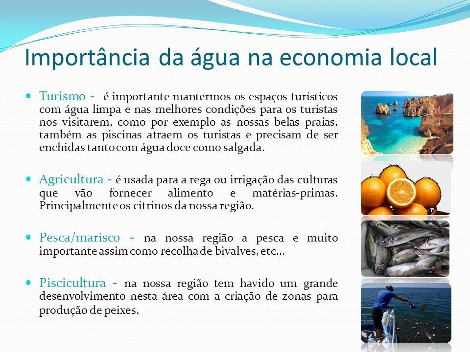 Importância da água na economia local Turismo - é importante mantermos os espaços turísticos com água limpa e nas melhores condições para os turistas
