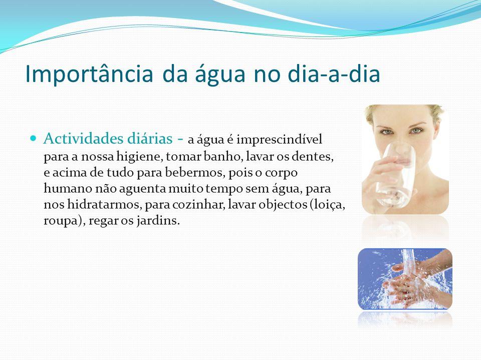 Importância da água no dia-a-dia Actividades diárias - a água é imprescindível para a nossa higiene, tomar banho, lavar os dentes, e acima de tudo par