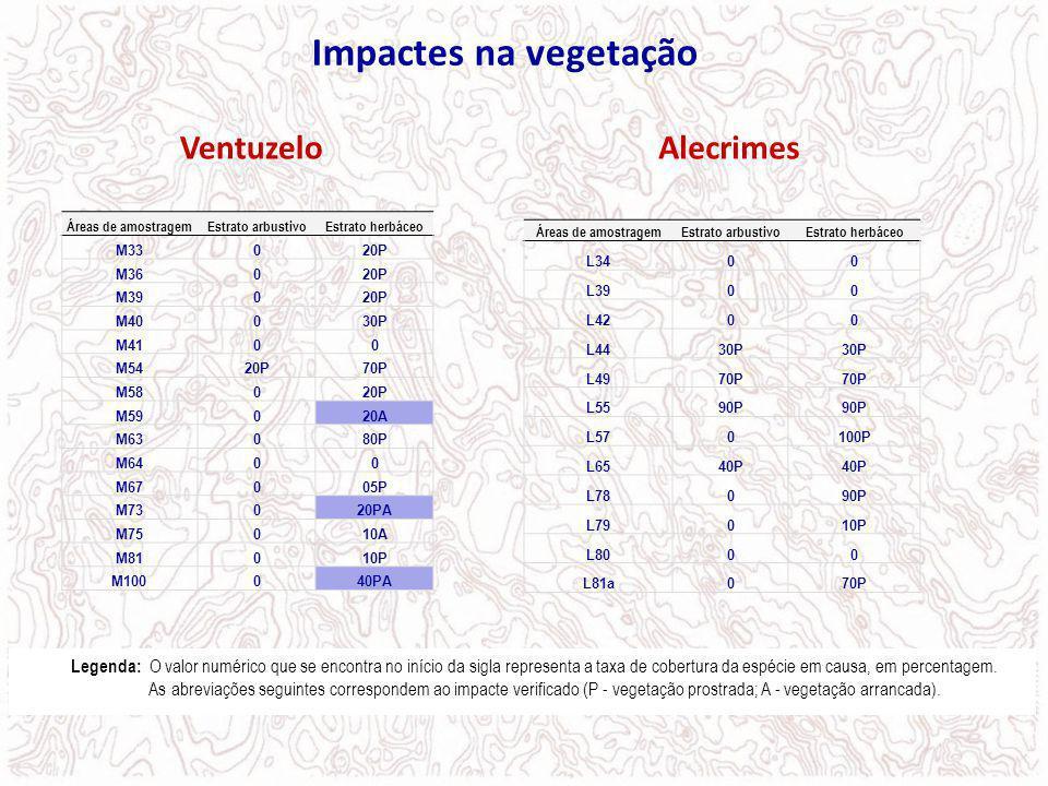 Impactes na vegetação Áreas de amostragemEstrato arbustivoEstrato herbáceo M33020P M36020P M39020P M40030P M4100 M5420P70P M58020P M59020A M63080P M64