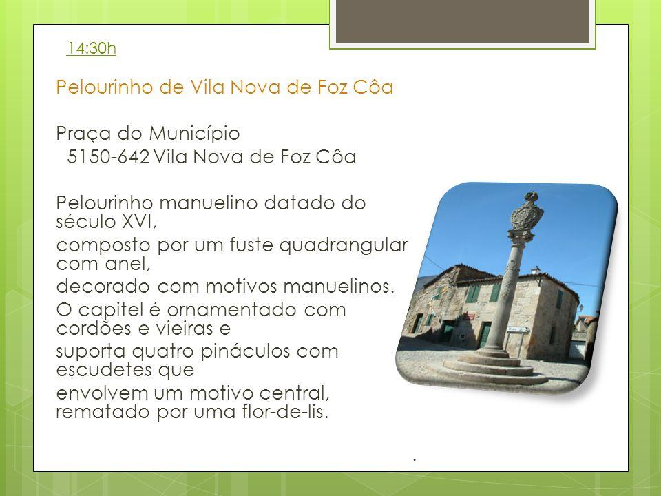 Pelourinho de Vila Nova de Foz Côa Praça do Município 5150-642 Vila Nova de Foz Côa Pelourinho manuelino datado do século XVI, composto por um fuste quadrangular com anel, decorado com motivos manuelinos.