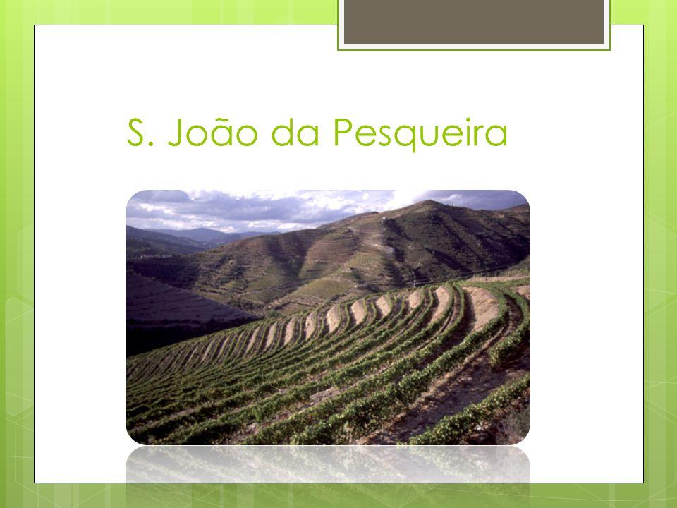S. João da Pesqueira