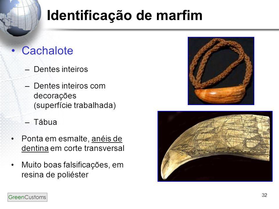 32 Identificação de marfim Cachalote –Dentes inteiros –Dentes inteiros com decorações (superfície trabalhada) –Tábua Ponta em esmalte, anéis de dentin
