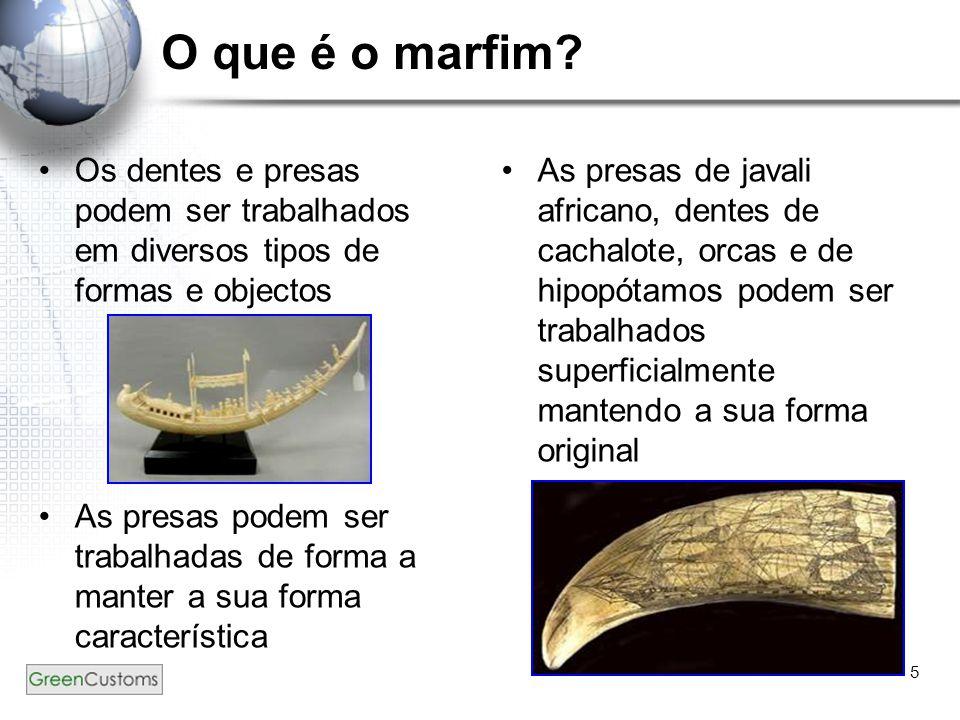 5 O que é o marfim? Os dentes e presas podem ser trabalhados em diversos tipos de formas e objectos As presas podem ser trabalhadas de forma a manter