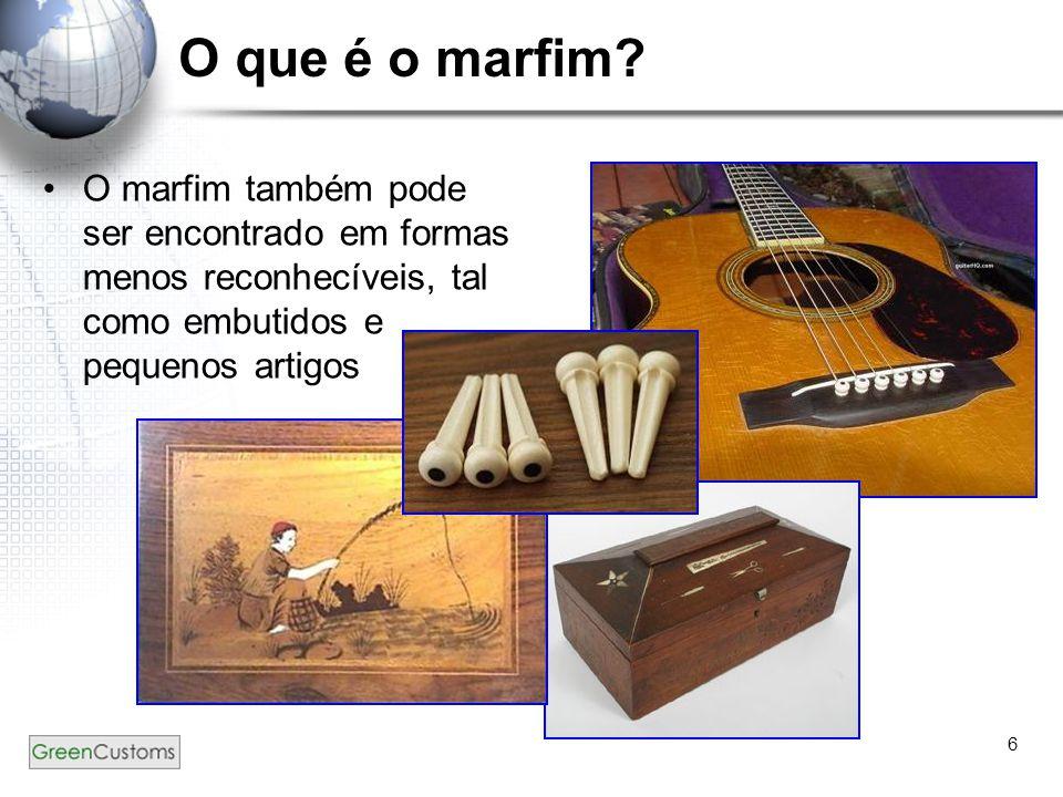 6 O que é o marfim? O marfim também pode ser encontrado em formas menos reconhecíveis, tal como embutidos e pequenos artigos