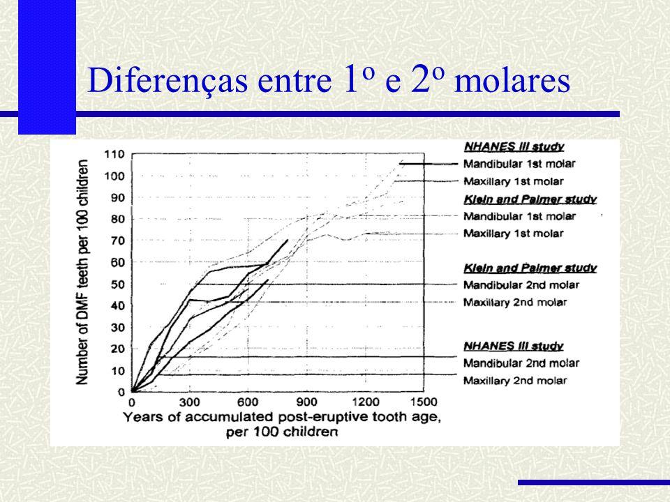Diferenças entre 1 o e 2 o molares