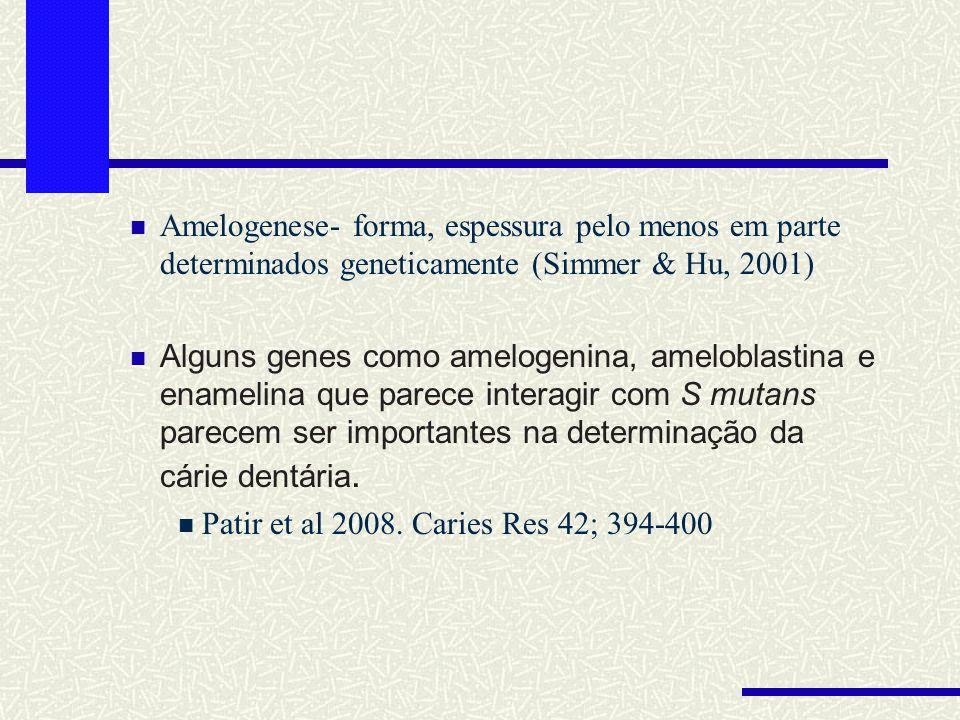 Amelogenese- forma, espessura pelo menos em parte determinados geneticamente (Simmer & Hu, 2001) Alguns genes como amelogenina, ameloblastina e enamel