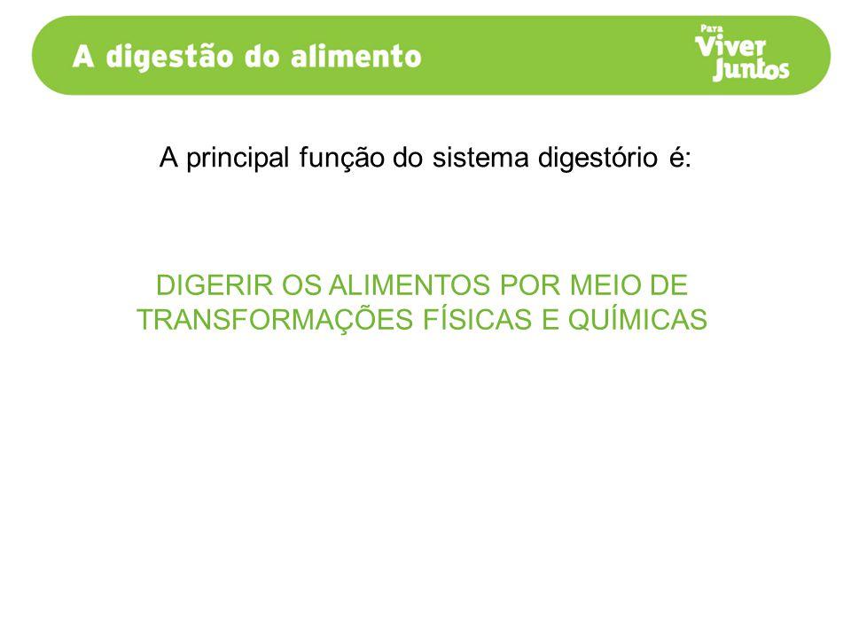A principal função do sistema digestório é: DIGERIR OS ALIMENTOS POR MEIO DE TRANSFORMAÇÕES FÍSICAS E QUÍMICAS