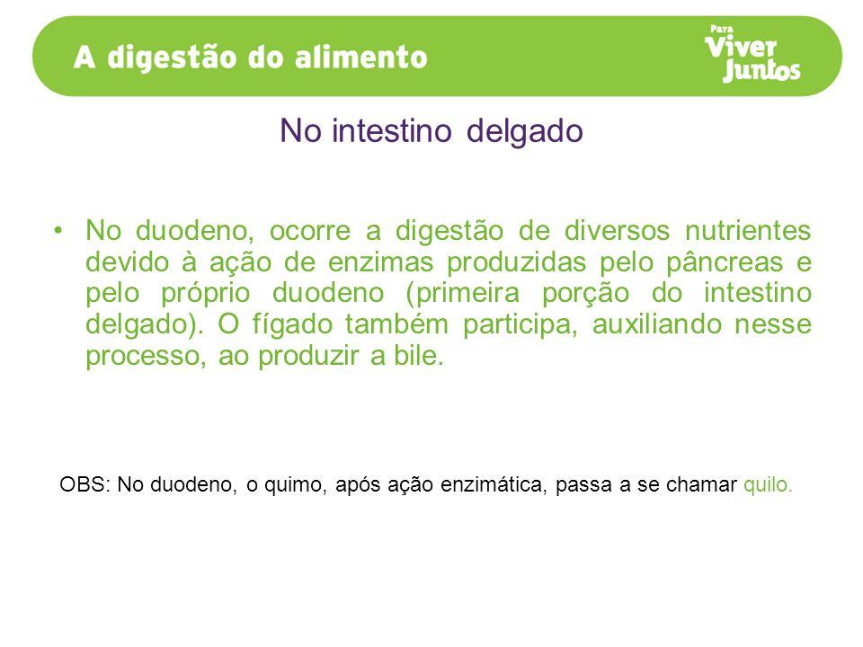 No duodeno, ocorre a digestão de diversos nutrientes devido à ação de enzimas produzidas pelo pâncreas e pelo próprio duodeno (primeira porção do inte