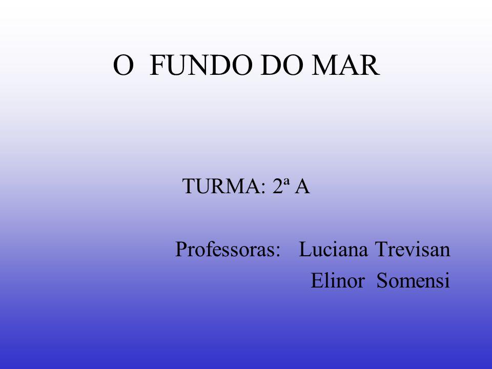 O FUNDO DO MAR TURMA: 2ª A Professoras: Luciana Trevisan Elinor Somensi