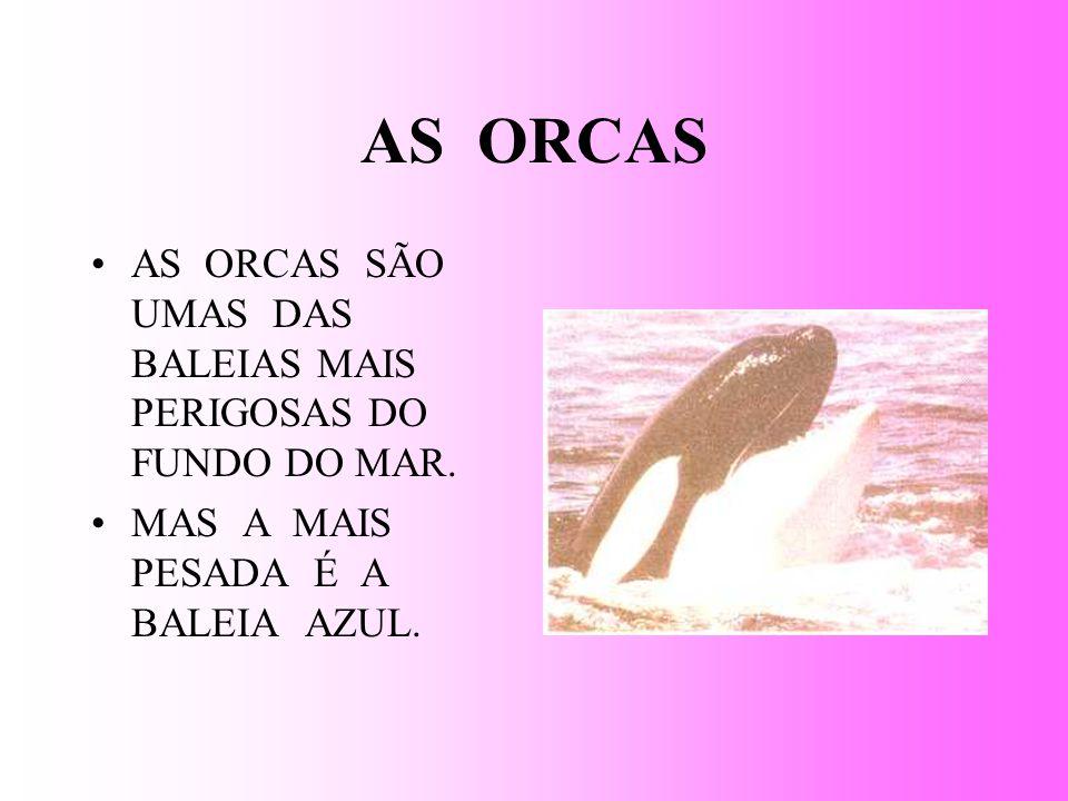 AS ORCAS AS ORCAS SÃO UMAS DAS BALEIAS MAIS PERIGOSAS DO FUNDO DO MAR.