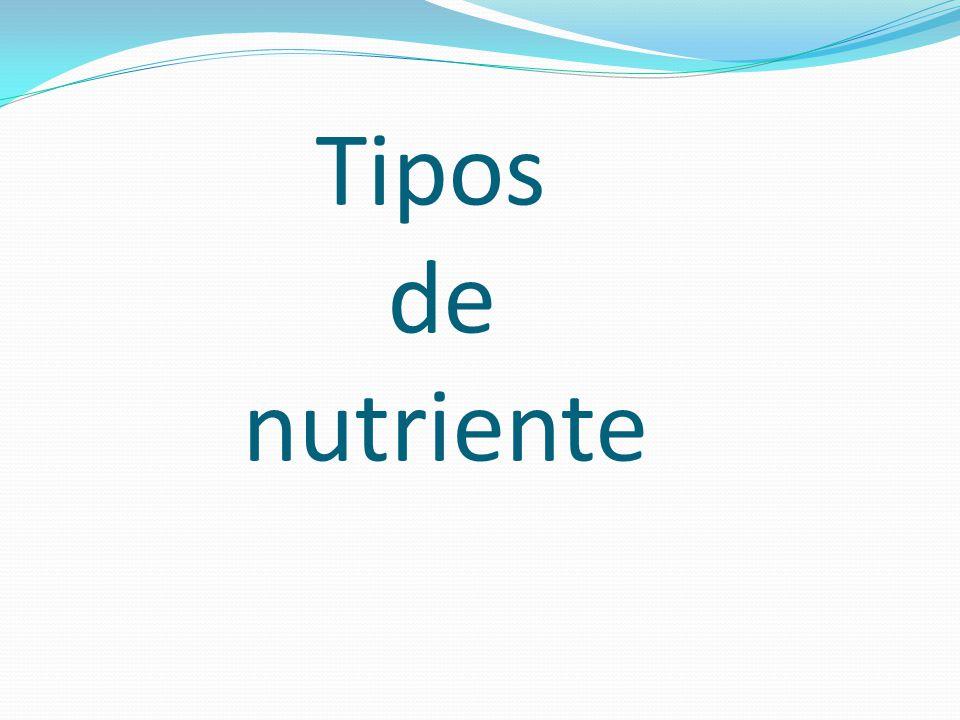 Tipos de nutriente