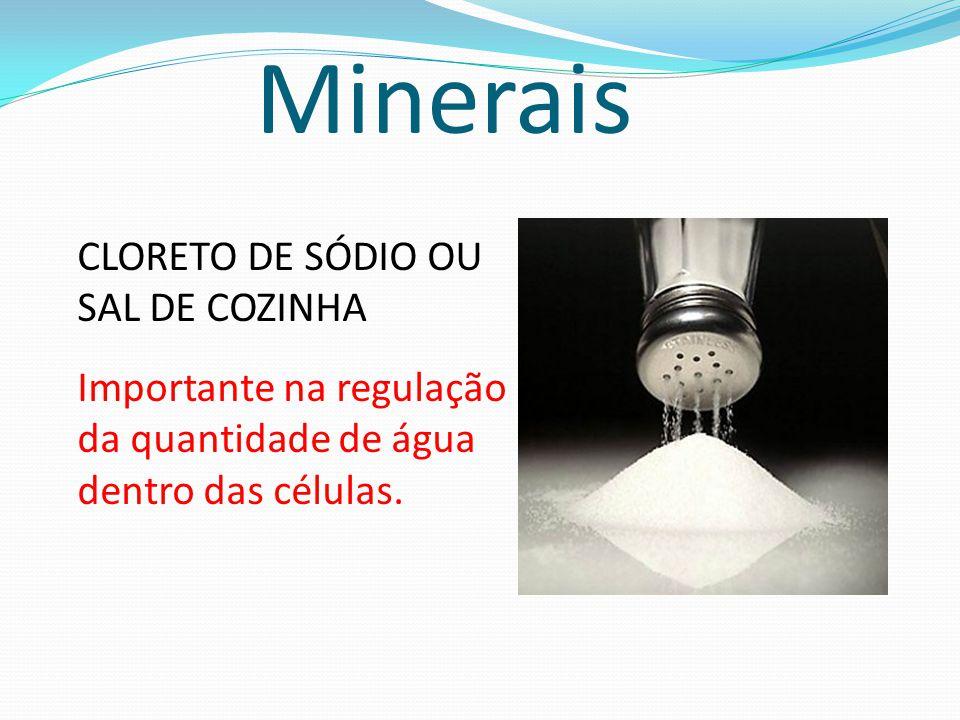 Minerais CLORETO DE SÓDIO OU SAL DE COZINHA Importante na regulação da quantidade de água dentro das células.