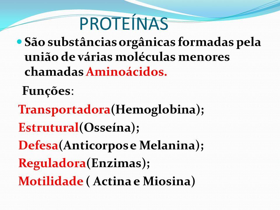 PROTEÍNAS São substâncias orgânicas formadas pela união de várias moléculas menores chamadas Aminoácidos. Funções: Transportadora(Hemoglobina); Estrut