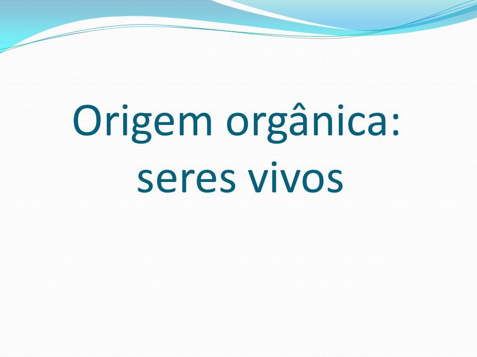 PROTEÍNAS São substâncias orgânicas formadas pela união de várias moléculas menores chamadas Aminoácidos.