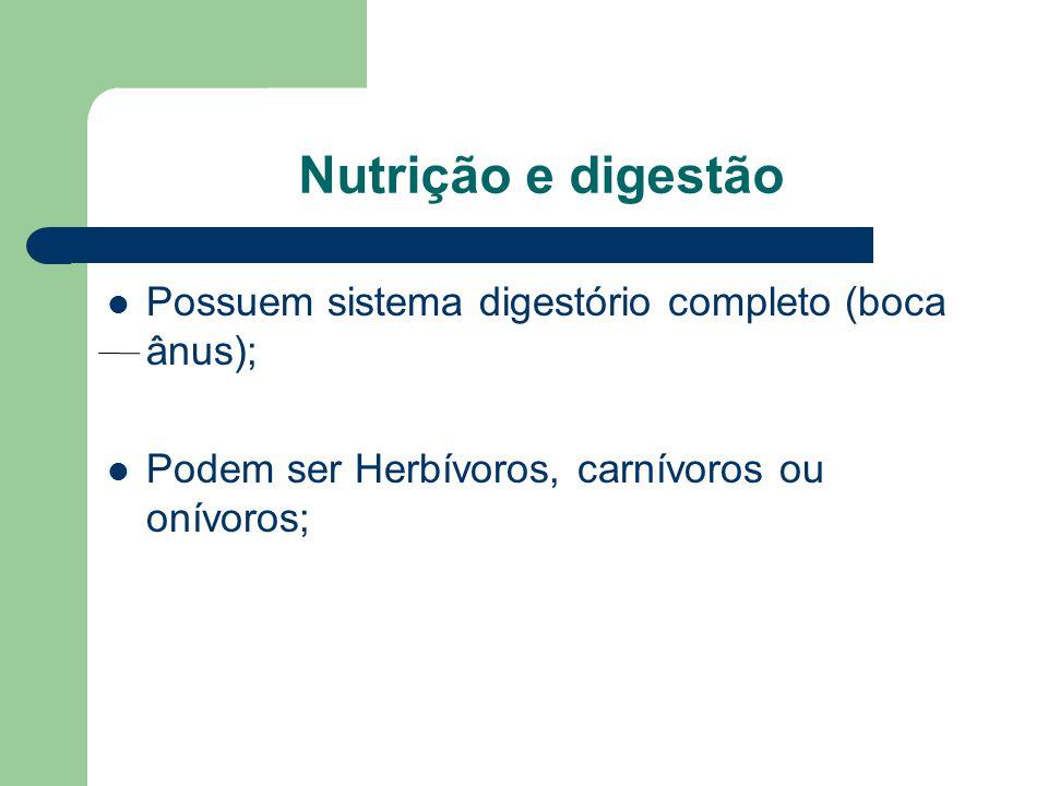 Nutrição e digestão Possuem sistema digestório completo (boca ânus); Podem ser Herbívoros, carnívoros ou onívoros;