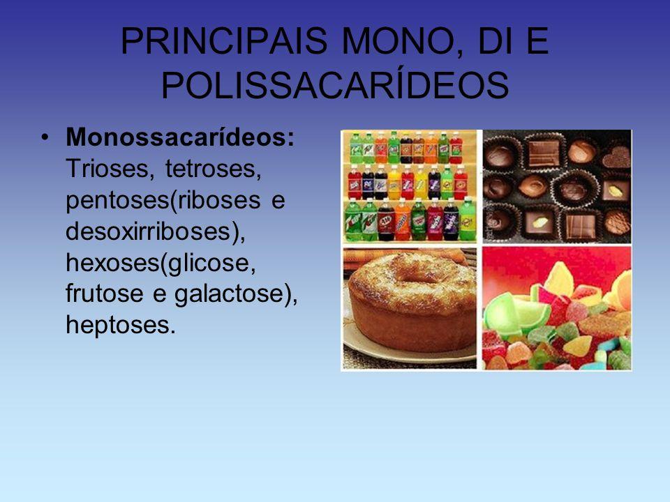 PRINCIPAIS MONO, DI E POLISSACARÍDEOS Monossacarídeos: Trioses, tetroses, pentoses(riboses e desoxirriboses), hexoses(glicose, frutose e galactose), h