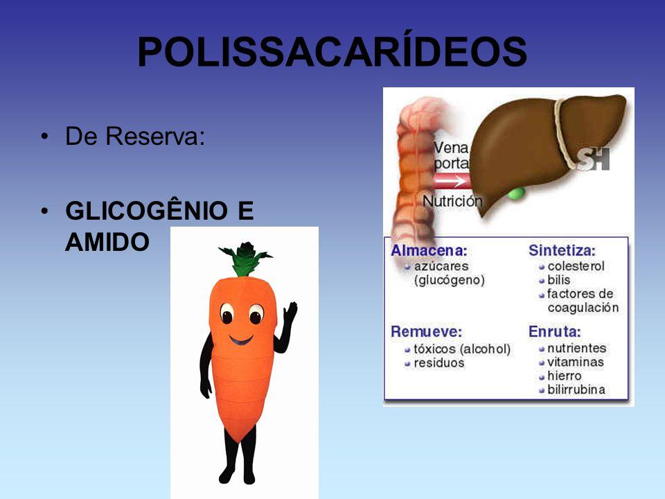 POLISSACARÍDEOS De Reserva: GLICOGÊNIO E AMIDO