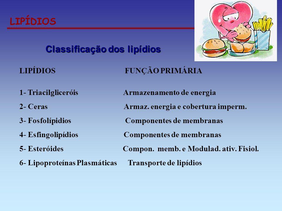 LIPÍDIOS Classificação dos lipídios Classificação dos lipídios LIPÍDIOS FUNÇÃO PRIMÁRIA 1- Triacilgliceróis Armazenamento de energia 2- Ceras Armaz. e
