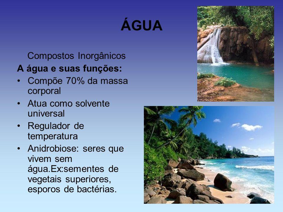 ÁGUA Compostos Inorgânicos A água e suas funções: Compõe 70% da massa corporal Atua como solvente universal Regulador de temperatura Anidrobiose: sere