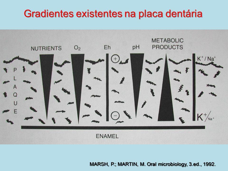 MARSH, P.; MARTIN, M. Oral microbiology, 3.ed., 1992. Gradientes existentes na placa dentária