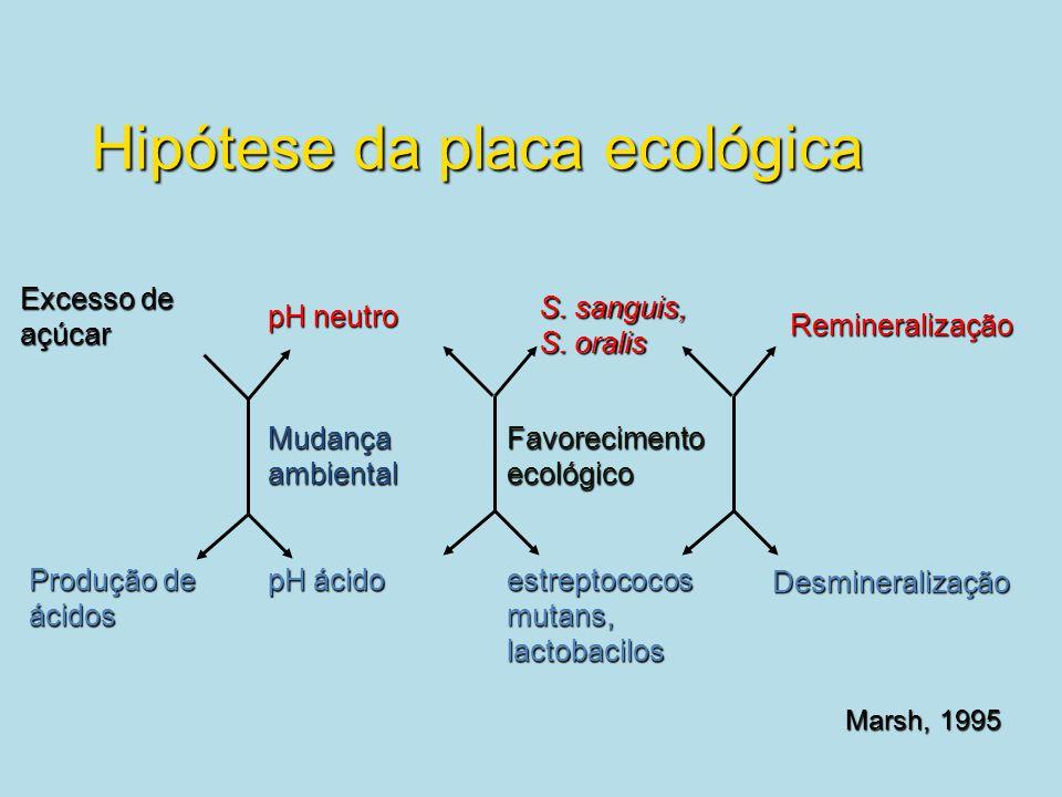 Hipótese da placa ecológica Excesso de açúcar Produção de ácidos pH ácido pH neutro S. sanguis, S. oralis estreptococos mutans, lactobacilos Remineral