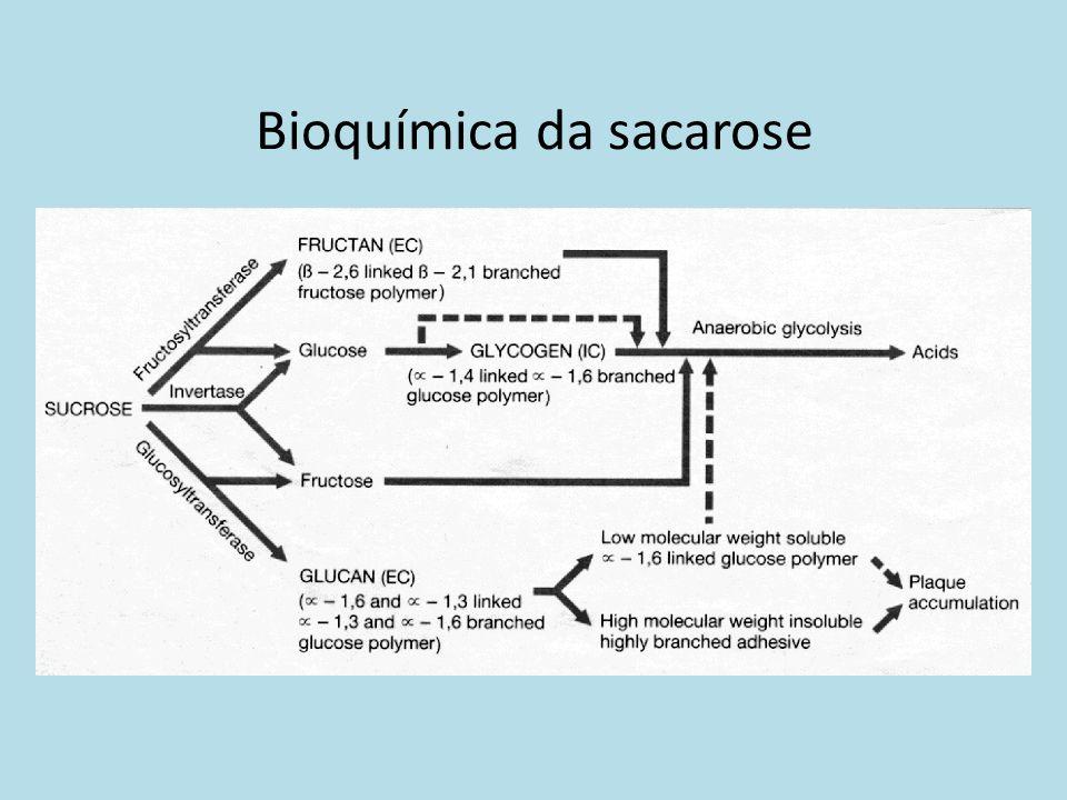 Bioquímica da sacarose