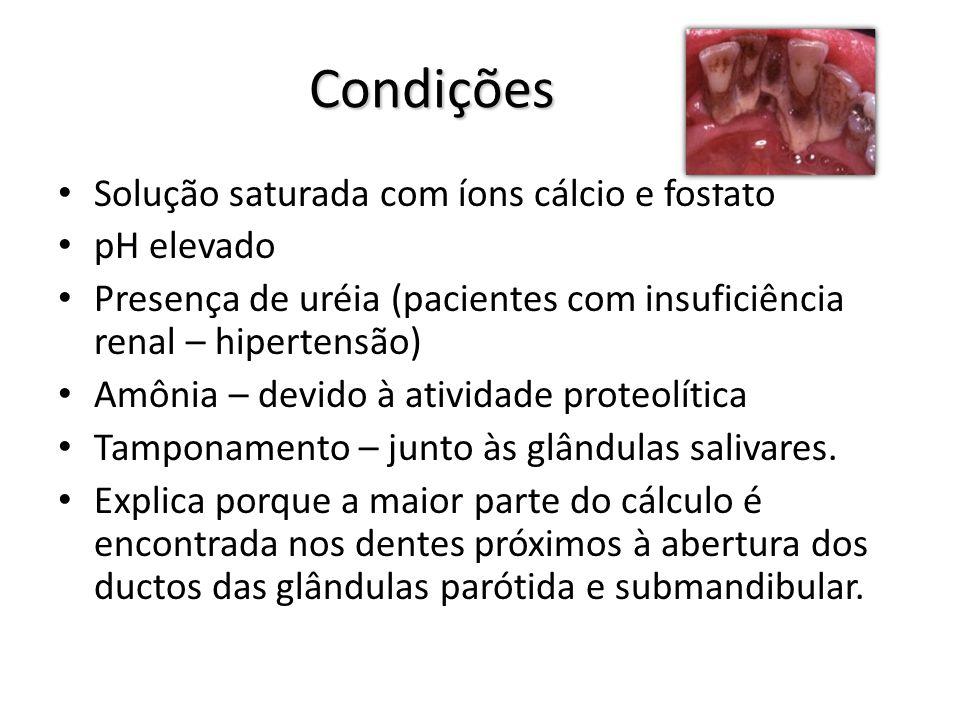 Condições Solução saturada com íons cálcio e fosfato pH elevado Presença de uréia (pacientes com insuficiência renal – hipertensão) Amônia – devido à