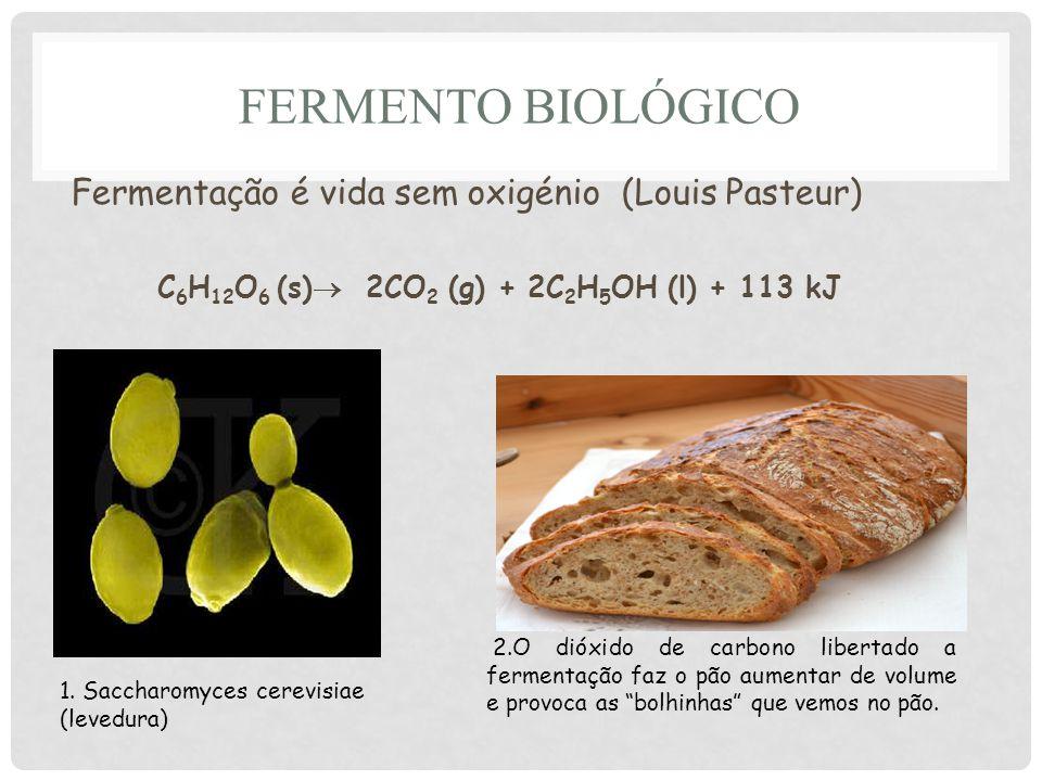 FERMENTO BIOLÓGICO Fermentação é vida sem oxigénio (Louis Pasteur) C 6 H 12 O 6 (s) 2CO 2 (g) + 2C 2 H 5 OH (l) + 113 kJ 1.