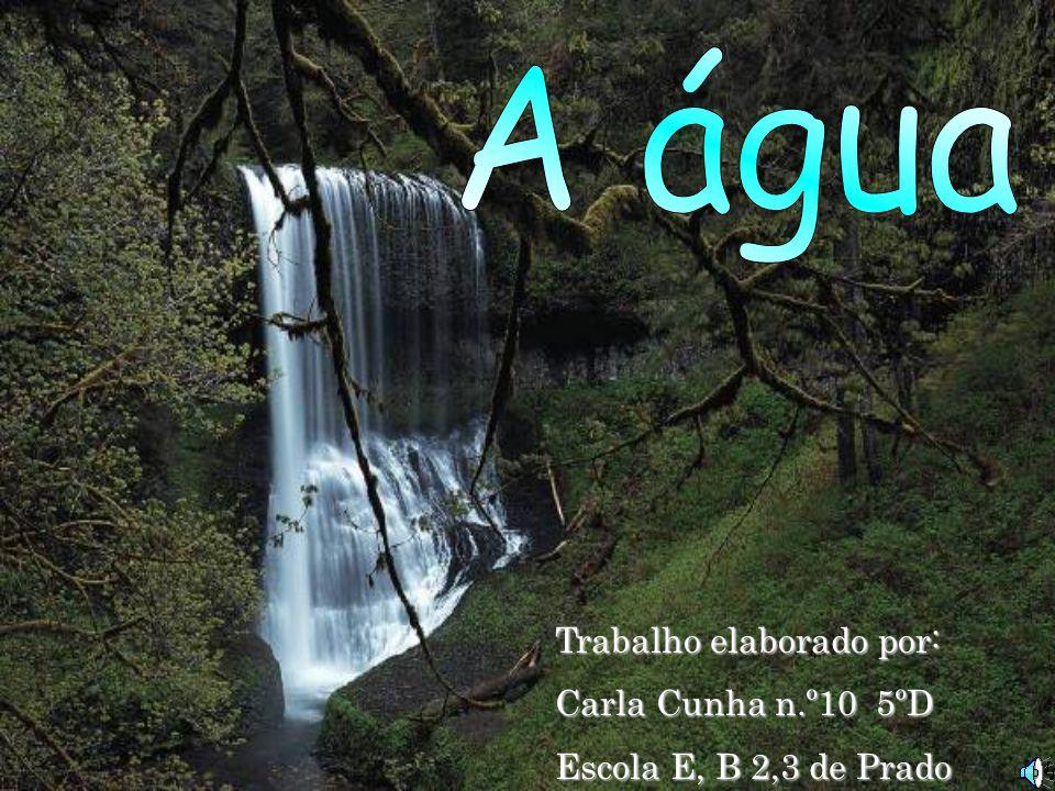 Trabalho elaborado por: Carla Cunha n.º10 5ºD Escola E, B 2,3 de Prado