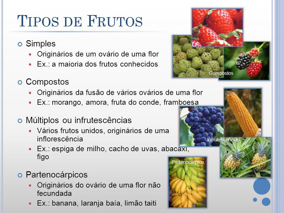 T IPOS DE F RUTOS Simples Originários de um ovário de uma flor Ex.: a maioria dos frutos conhecidos Compostos Originários da fusão de vários ovários d