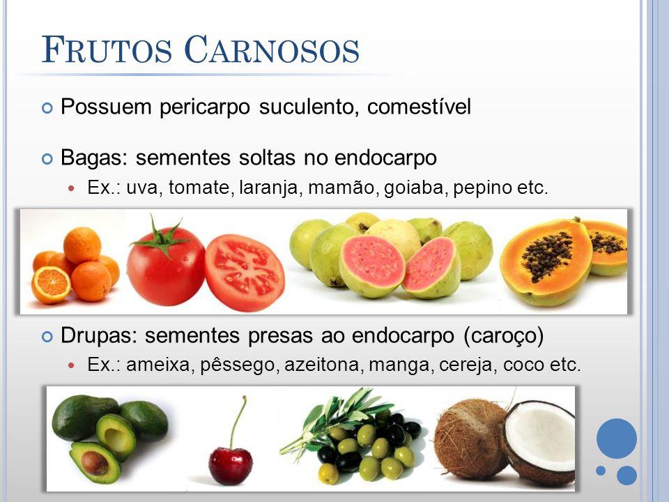 F RUTOS C ARNOSOS Possuem pericarpo suculento, comestível Bagas: sementes soltas no endocarpo Ex.: uva, tomate, laranja, mamão, goiaba, pepino etc. Dr