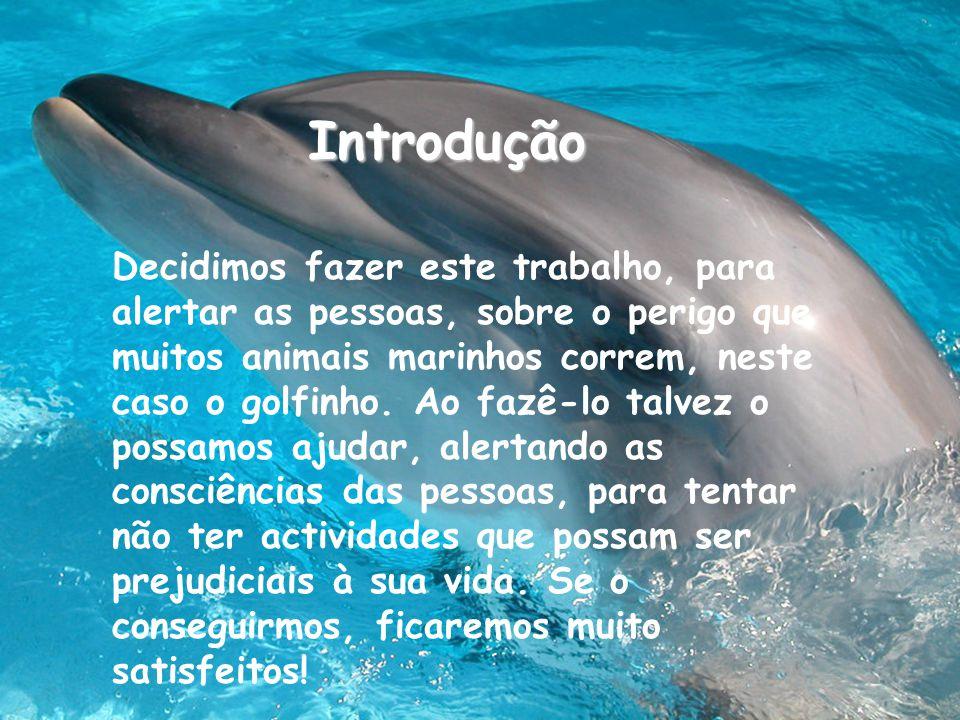 Decidimos fazer este trabalho, para alertar as pessoas, sobre o perigo que muitos animais marinhos correm, neste caso o golfinho.
