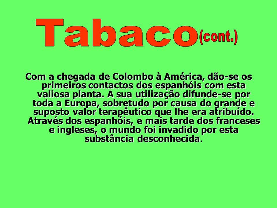 O tabaco é uma planta do género nicotínico e existem mais de cinquenta espécies diferentes. A Nicotina Tabacum é a que suscita maior interesse: é uma