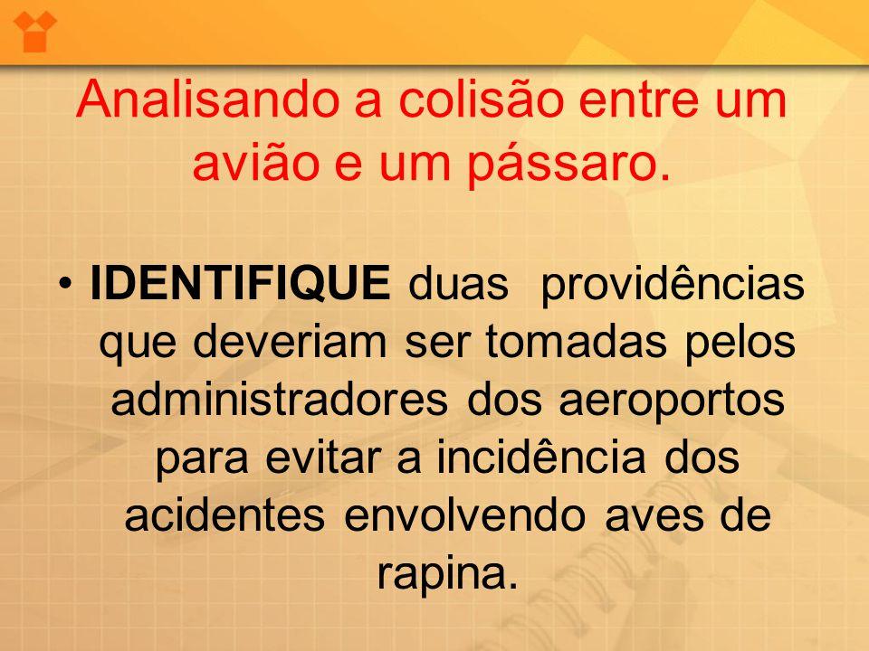 IDENTIFIQUE duas providências que deveriam ser tomadas pelos administradores dos aeroportos para evitar a incidência dos acidentes envolvendo aves de