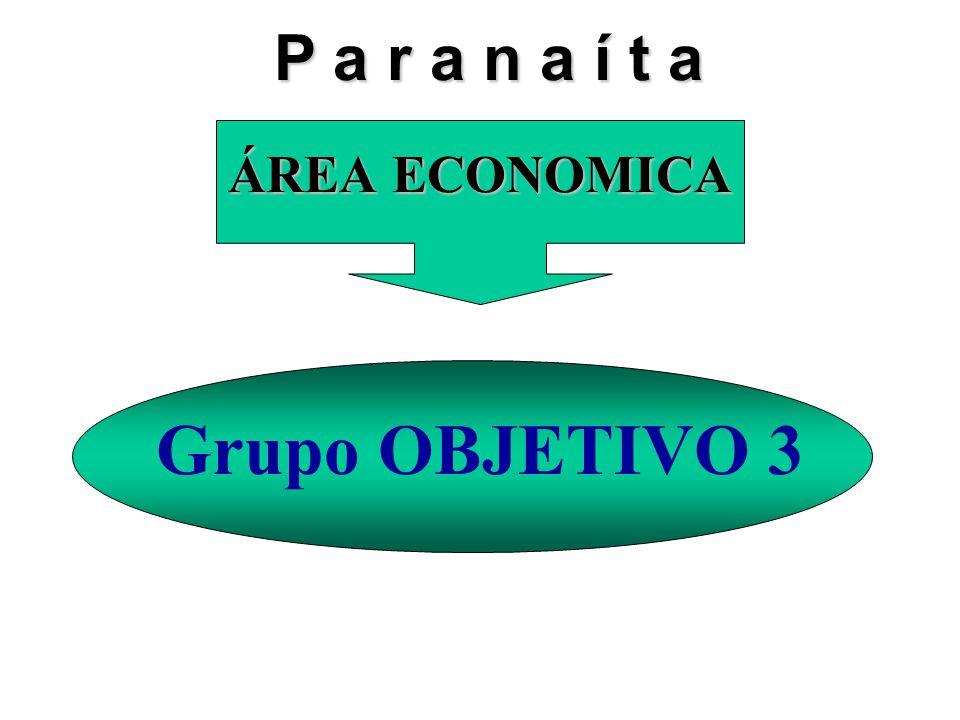 ÁREA ECONOMICA Grupo OBJETIVO 3 P a r a n a í t a